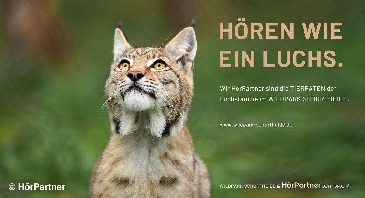 HörPartner - Paten unserer Luchse Lunabell und Lugh