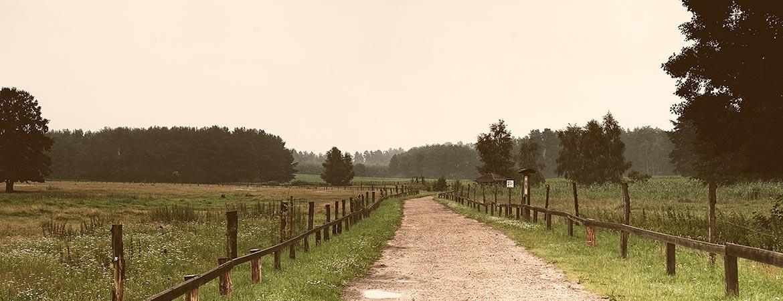 Wildpark-Schorfheide-Barnim